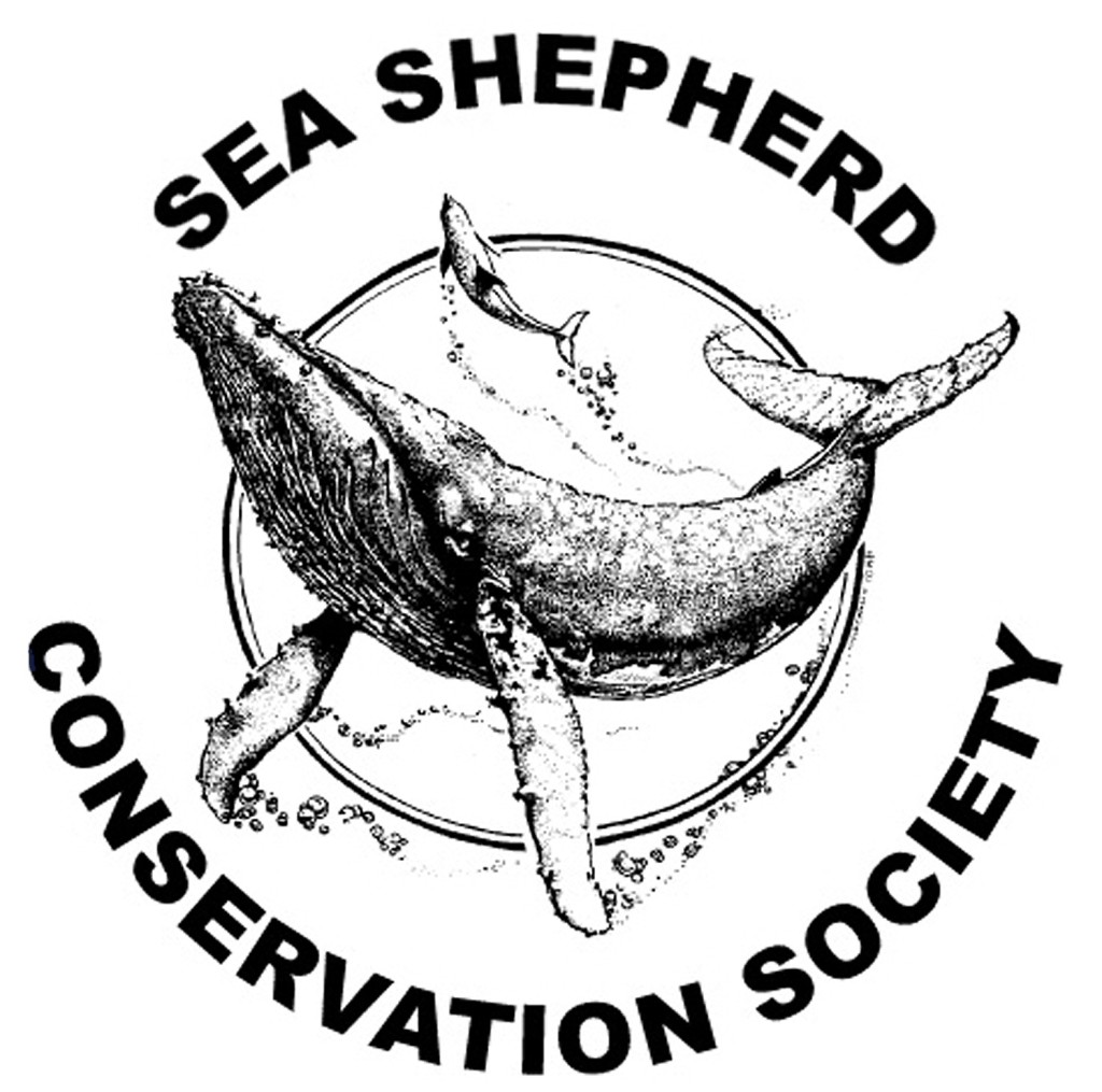 sea_shepherd_seas_ocean_atlantique_surf_parlementia_bateau_mer_greepeace_wwf_europe_ecologie_vert_bleu12[1]